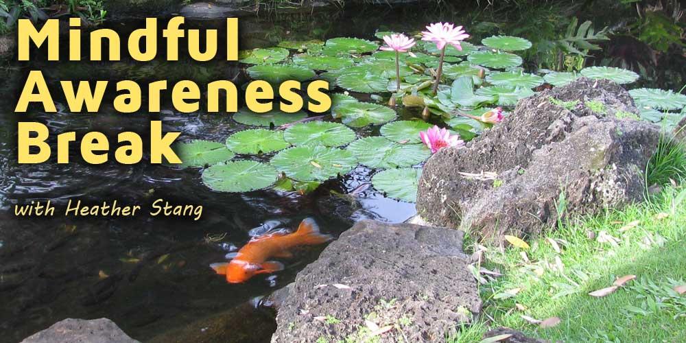 Guided Mindful Awareness Break